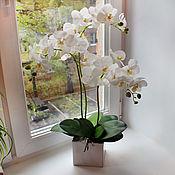 Цветы и флористика ручной работы. Ярмарка Мастеров - ручная работа Белые орхидеи в квадратном горшке. Handmade.
