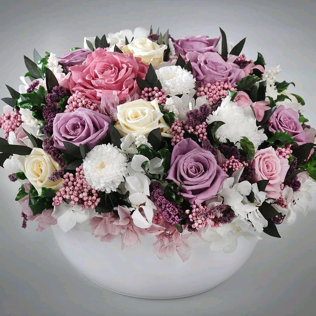 Трусов февраля, стабилизированные цветы купить интернет магазин москва