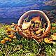 Заказать Цыганский чай с пижмой и яблоками. Ведьмины прогулки. Ярмарка Мастеров. . Кулинарные сувениры Фото №3