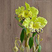 Цветы и флористика ручной работы. Ярмарка Мастеров - ручная работа Орхидея Каттлея из полимерной глины. Handmade.