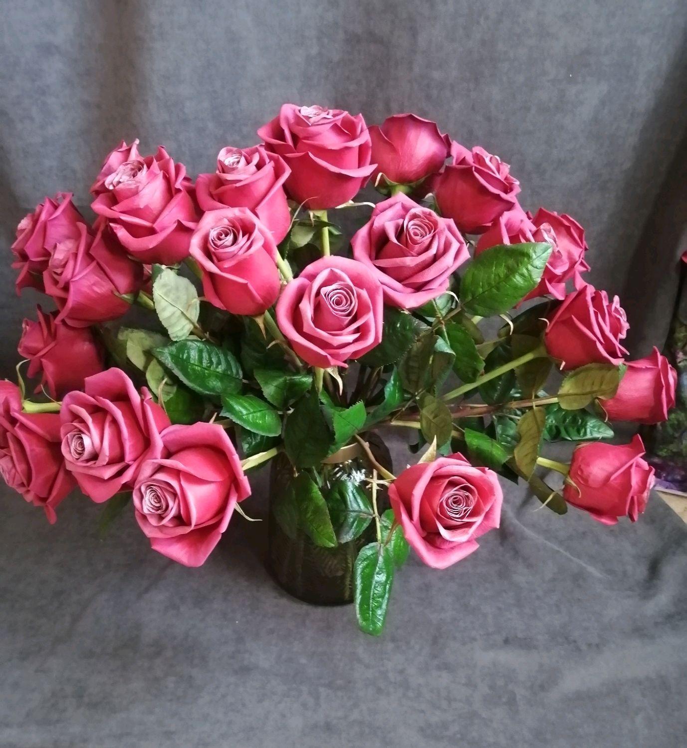 25 роз Cerry Oh, в вазоне, Цветы, Нижний Тагил,  Фото №1