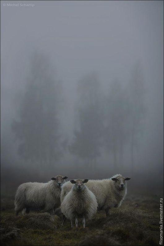 """Валяние ручной работы. Ярмарка Мастеров - ручная работа. Купить Флис Мериноса  """" Туман """", 50 гр.. Handmade."""