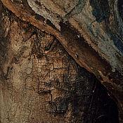 Fine art photographs handmade. Livemaster - original item Bark photo pictures. Handmade.