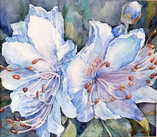 Картины цветов ручной работы. Ярмарка Мастеров - ручная работа. Купить Рододендроны. Handmade. Цветы, акварельная живопись, цветы акварелью