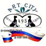 artsity495