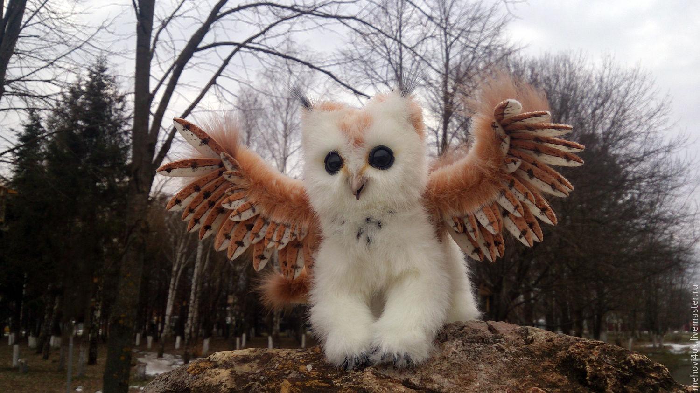 Котосовенок Лоя - фантазийный зверь, зверек, кот, сова, Мягкие игрушки, Лабинск,  Фото №1