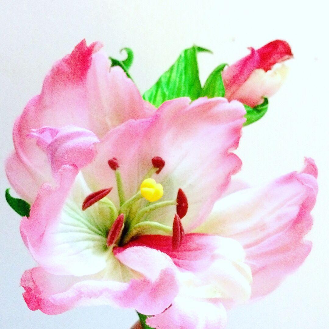 """Гладиолус""""Воздушное кружево"""" из японских тканей, Цветы, Москва,  Фото №1"""