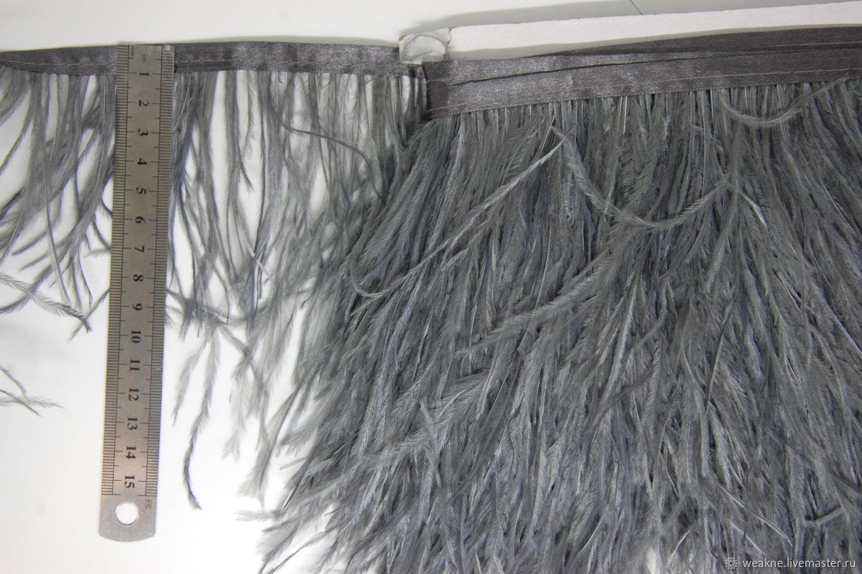 Trim of ostrich feathers 10-15 cm dark gray, braid, Moscow,  Фото №1
