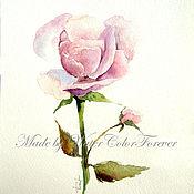 Картины и панно ручной работы. Ярмарка Мастеров - ручная работа Акварель Пыльная роза. Handmade.