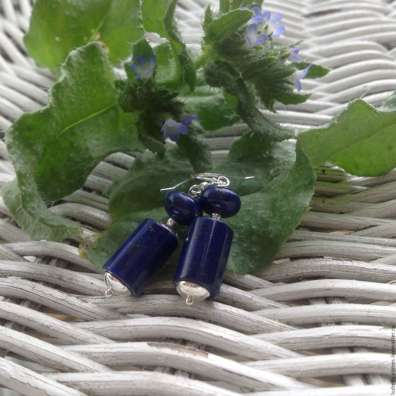 Silver earrings with lapis lazuli 'Oceania', Earrings, Moscow,  Фото №1