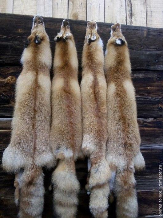 Другие виды рукоделия ручной работы. Ярмарка Мастеров - ручная работа. Купить шкуры лисы. Handmade. Рыжий, лиса