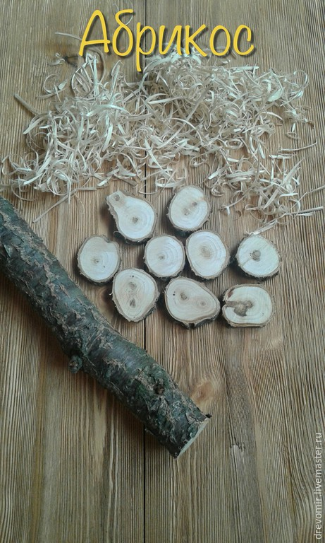 Другие виды рукоделия ручной работы. Ярмарка Мастеров - ручная работа. Купить Спилы дерева.. Handmade. Белый, дуб, эко