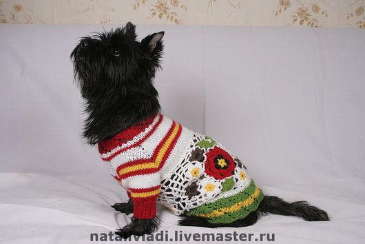 """Одежда для собак, ручной работы. Ярмарка Мастеров - ручная работа. Купить Платье для собачки """"Ах, лето"""". Handmade. Шерсть"""