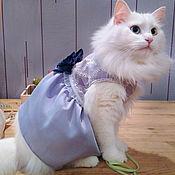 """Для домашних животных, ручной работы. Ярмарка Мастеров - ручная работа Платье для кошки """"Лавандовое"""". Handmade."""