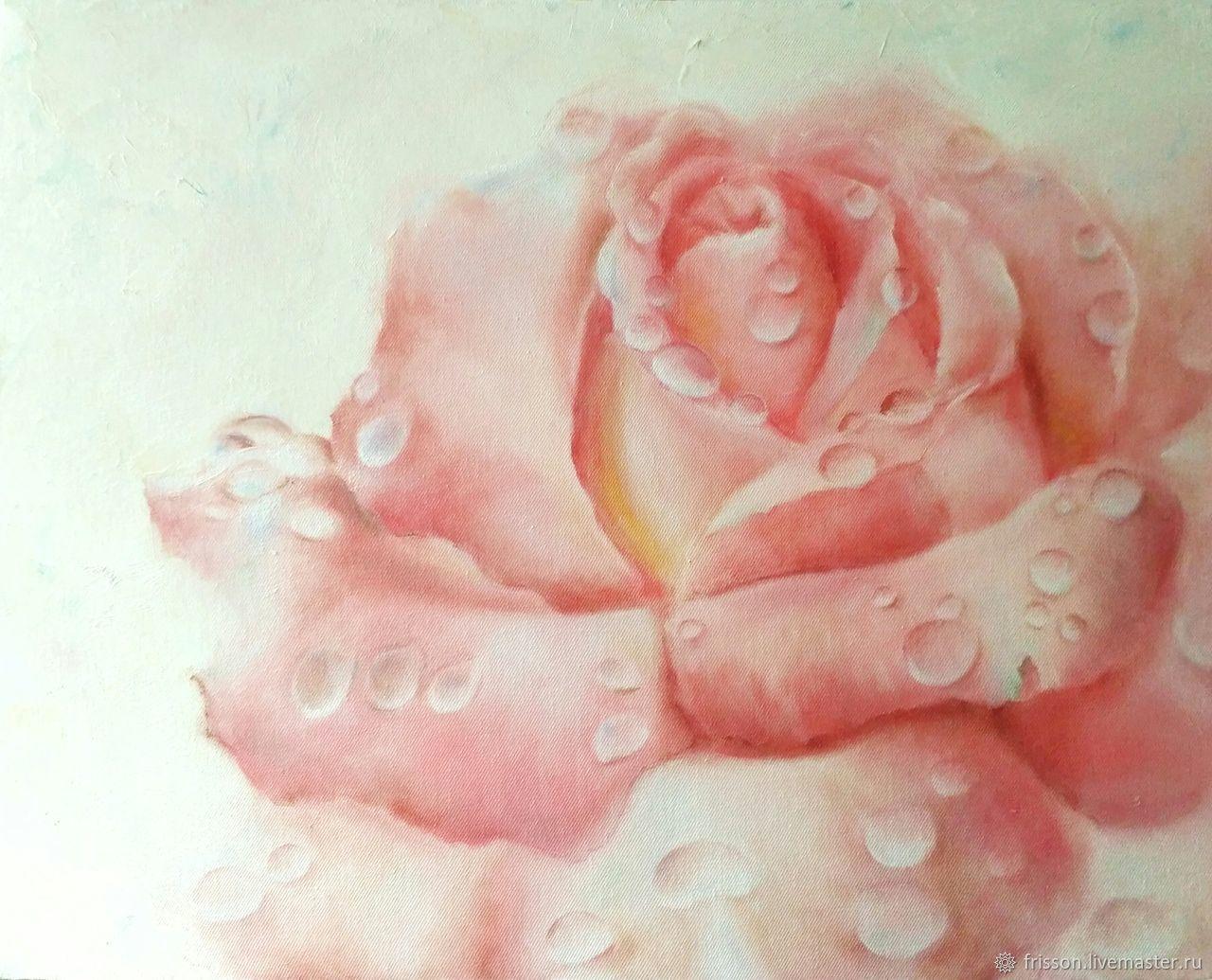 Нежная розовая роза, капли воды на лепестках, Картины, Санкт-Петербург,  Фото №1