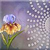Ирина (aleeva69) - Ярмарка Мастеров - ручная работа, handmade