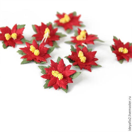 Цена указана за 1 цветок.   Диаметр цветочка 3,5 см.