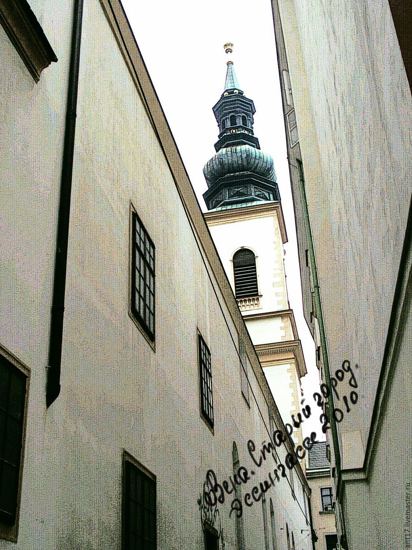 Вена. Старый город. 2010.