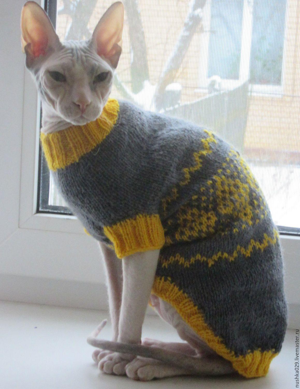 Как сделать свитер для кошки