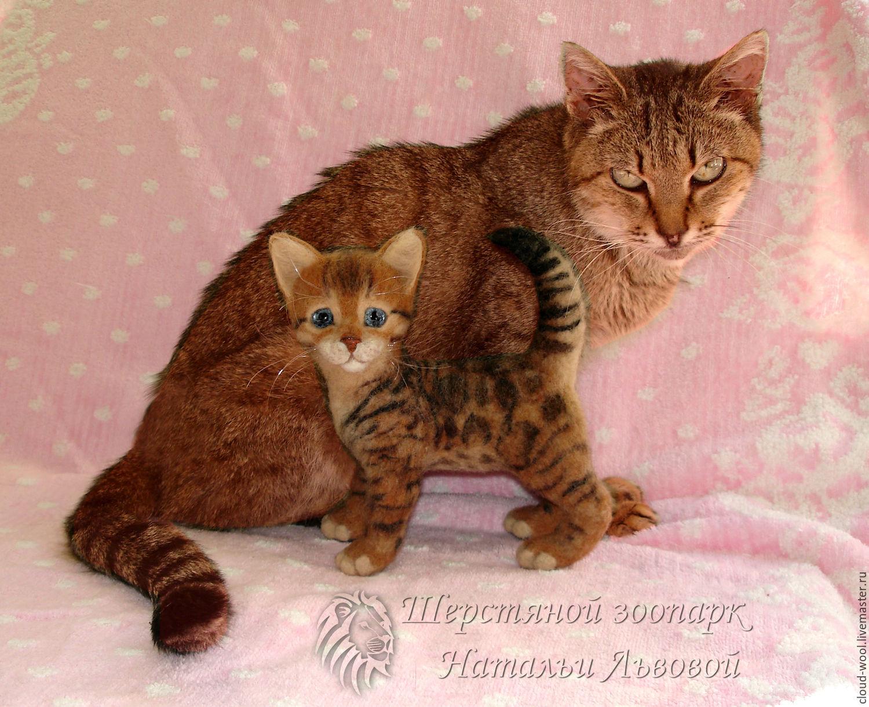 Homemade bengal cat toys