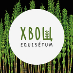 Equisetum - Ярмарка Мастеров - ручная работа, handmade