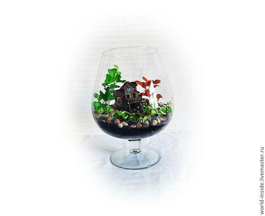 Интерьерные композиции ручной работы. Ярмарка Мастеров - ручная работа. Купить Флорариум в бокале. Handmade. Зеленый, подарок, подарок женщине