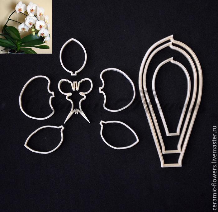 Set of cutters Orchid Phalaenopsis, sizes S-XL, plastic, Cutters, Rostov-on-Don,  Фото №1