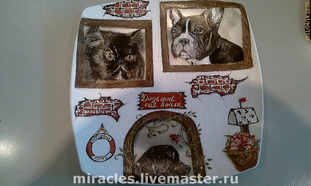 Dogs and cat house, Тарелки, Москва, Фото №1