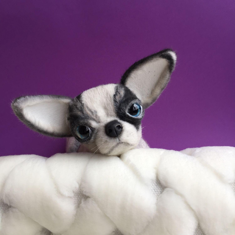 Игрушка щенок породы Чихуахуа, Портретная кукла, Харьков,  Фото №1