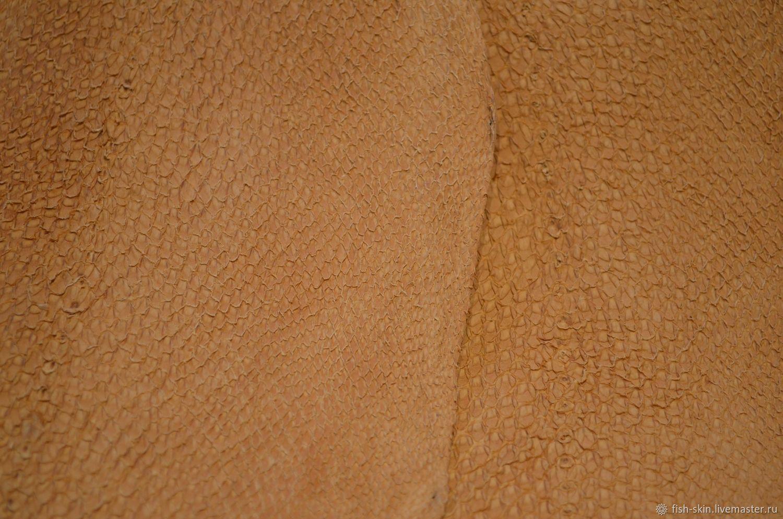 Предлагаем коричневую рыбью кожу. Представлены образцы кожи кеты и сёмги, глянцевая плотная и краст.