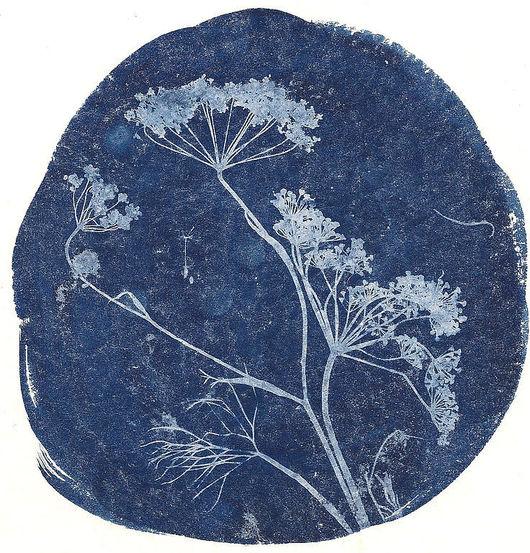 Фото-работы ручной работы. Ярмарка Мастеров - ручная работа. Купить флора. Handmade. Цианотипия, флора, фотография, синяя картинка