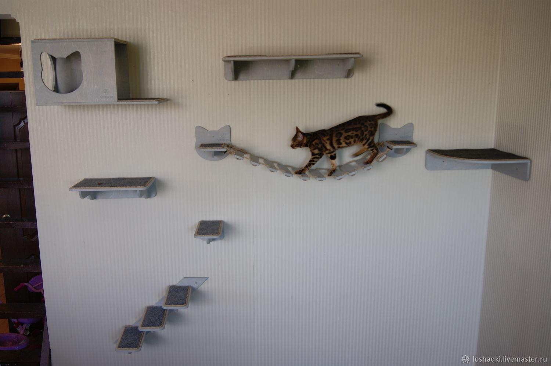 """Комплекс для кошек настенный """"Уют"""", Accessories for Pets, Pleasant,  Фото №1"""
