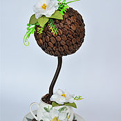 Топиарий кофейный с цветами Айвы