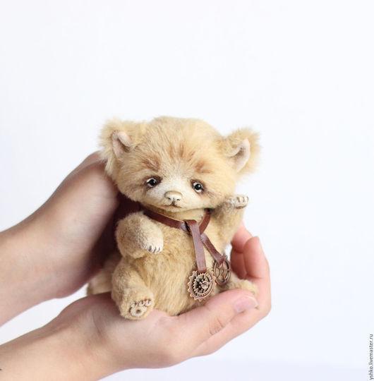 Мишки Тедди ручной работы. Ярмарка Мастеров - ручная работа. Купить Шерри котенок тедди. Handmade. Комбинированный, игрушка