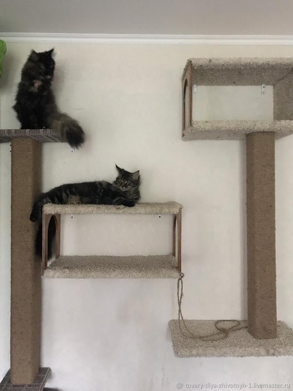 Игровой комплекс- когтеточка для кошек, Аксессуары для кошек, Москва, Фото №1