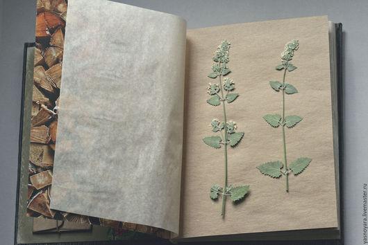 Фотоальбомы ручной работы. Ярмарка Мастеров - ручная работа. Купить Вельветовый альбом для гербария (А4, для 20 растений, крафт-листы). Handmade.