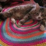 Вязаные коврики от Татьяны (kovriki-ot-Tani) - Ярмарка Мастеров - ручная работа, handmade