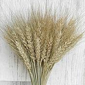 Цветы и флористика ручной работы. Ярмарка Мастеров - ручная работа Пшеница натуральная сухоцвет букетик. Handmade.