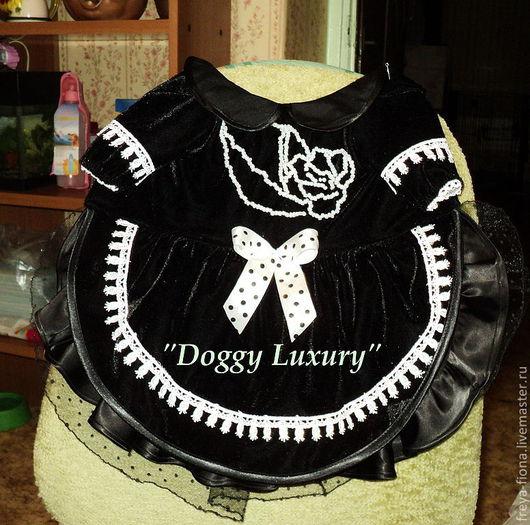 Одежда для собак, ручной работы. Ярмарка Мастеров - ручная работа. Купить праздничное платье. Handmade. Черный, шёлк натуральный