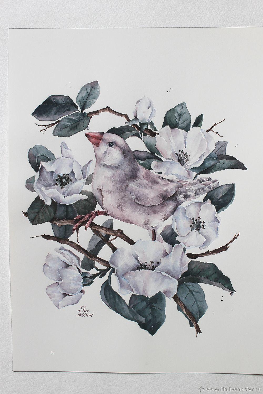 'Amadine in quince', Pictures, Zvenigorod,  Фото №1