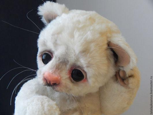 Мишки Тедди ручной работы. Ярмарка Мастеров - ручная работа. Купить Котенок Тедди. Handmade. Котенок, мягкая игрушка кот