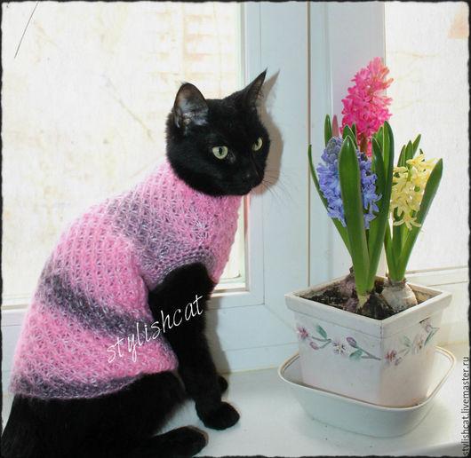 Одежда для кошек, ручной работы. Ярмарка Мастеров - ручная работа. Купить Свитер для кошек.. Handmade. Бледно-розовый, свитер для кошек