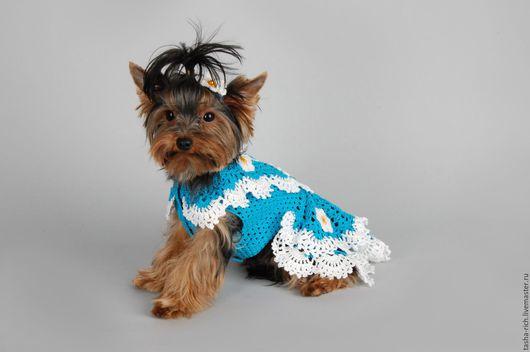 Одежда для собак, ручной работы. Ярмарка Мастеров - ручная работа. Купить Платье для милашки. Handmade. Бирюзовый, платье с цветами