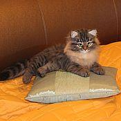 Куклы и игрушки handmade. Livemaster - original item Felt Siberian cat