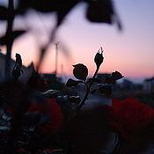 """Картины и панно ручной работы. Ярмарка Мастеров - ручная работа """"Вечер"""". Handmade."""