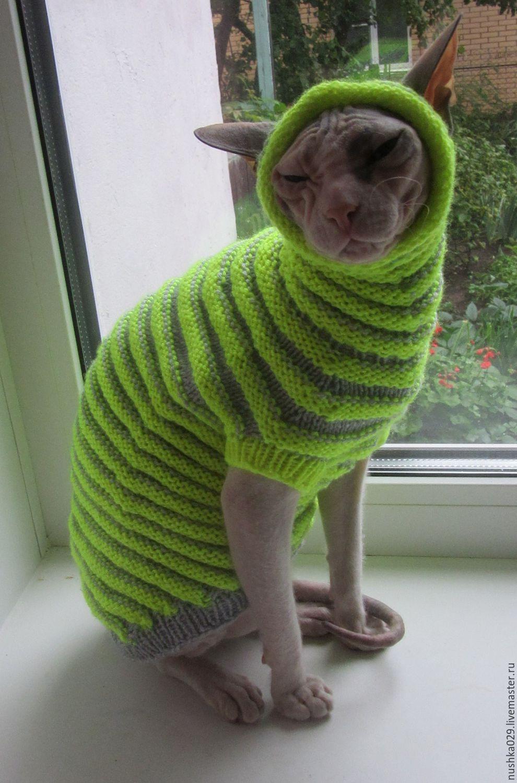 Свитер для кота вязание 962