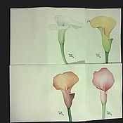 """Картины и панно ручной работы. Ярмарка Мастеров - ручная работа набор открыток """"Каллы"""". Handmade."""
