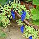 Деревья ручной работы. Ярмарка Мастеров - ручная работа. Купить Виноград из бисера.. Handmade. Зеленый, виноград, подарок на день рождения