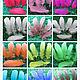 Другие виды рукоделия ручной работы. Перья гусиные. Цветные. TekiToka (Дина). Ярмарка Мастеров.
