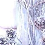 Ulia (Freessia) - Ярмарка Мастеров - ручная работа, handmade